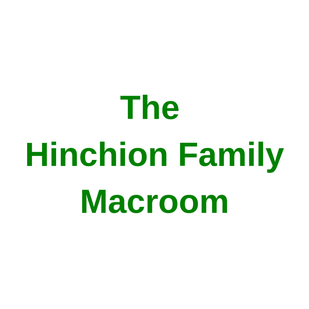The Hinchion Family